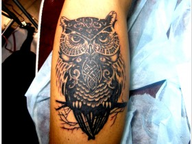 tattoo_krasnodar51